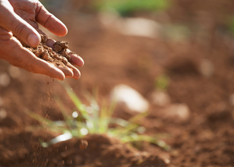 Soil nutrition in South Dakota